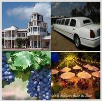 Texas Wine Country Limousine Tour for Four 202//201