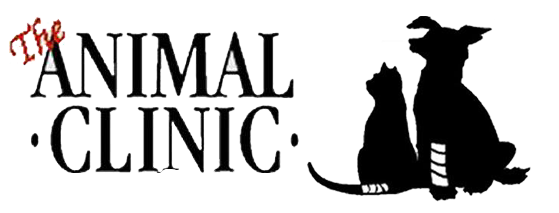 Click Here... The Animal Clinic