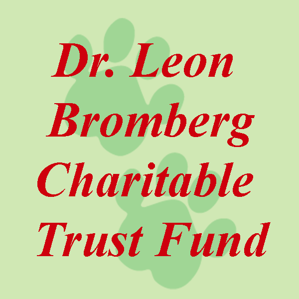 Dr. Leon Bromberg Charitable Trust Fund
