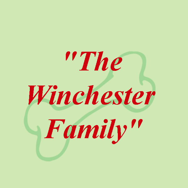 The Winchester Family