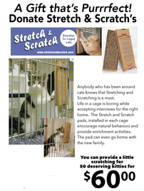 Provide a Stretch and Scratch for a Shelter Cat 202//268