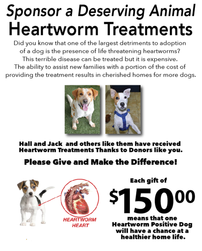 Underwrite Heartworm Treatment for a Deserving Dog 202//251