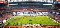 Houston Texans VIP Game Day Experience