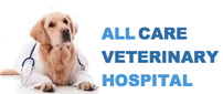 Gift Certificate for $100 for Veterinary Services 202//85