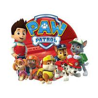Paw Patrol and Fire Truck Fun 202//202