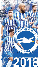 Brighton & Hove Albion Home Game - Next Season 161//280