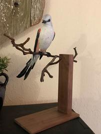 Hand carved scissor-tailed flycatcher by Doug Jobes 202//269
