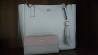 Kate Spade Leather Handbag + Wallet/Healthy Eyes Advantage