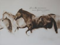 Inspirational Horse Canvas 202//151