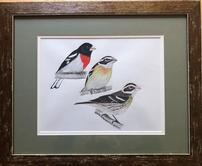 Gouache watercolor painting by famed local birder and naturalist, Cin-Ty Lee 202//166